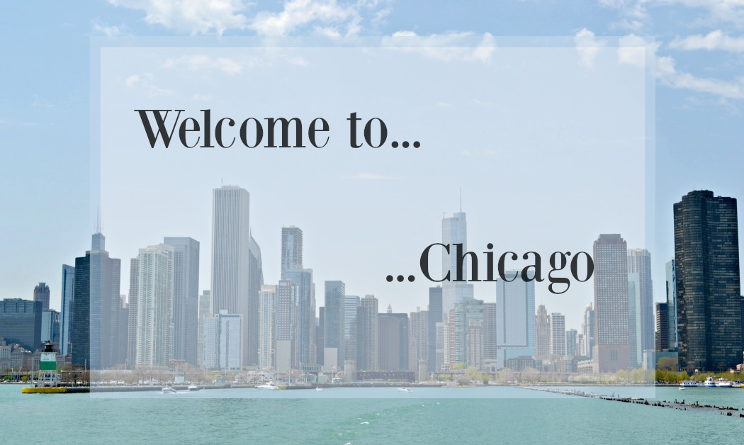 sylvislifestyle-chicago-sightseeing11