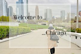 sylvislifestyle-chicago-sightseeing261