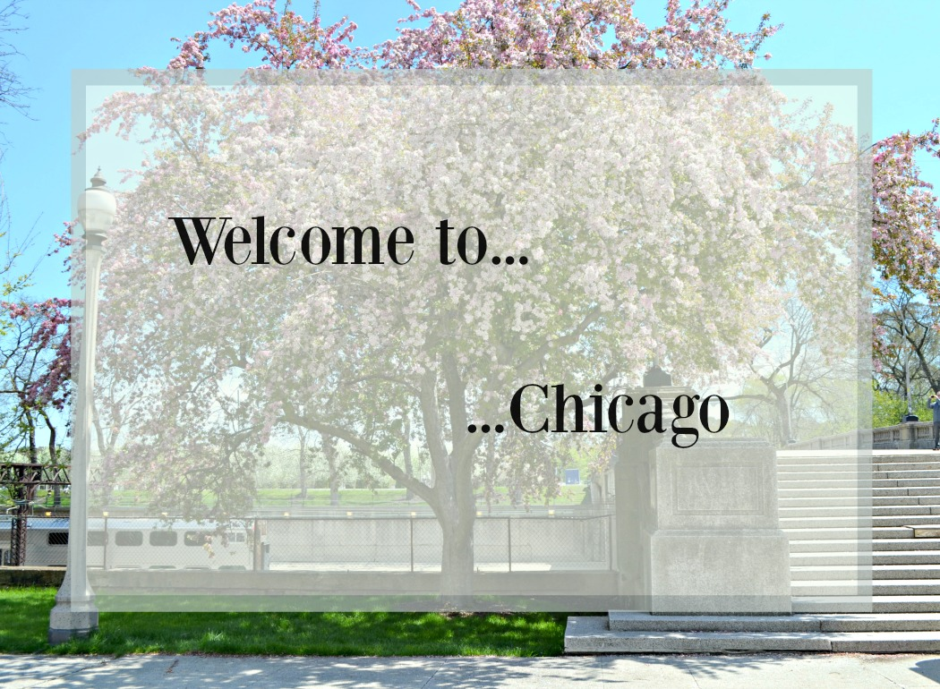 sylvislifestyle-chicago-travelguide1