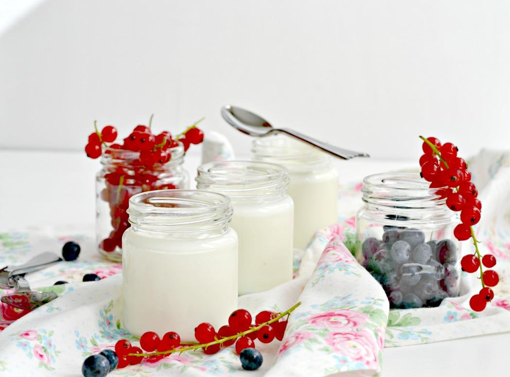 sylvislifestyle-milchdialog-joghurt-2