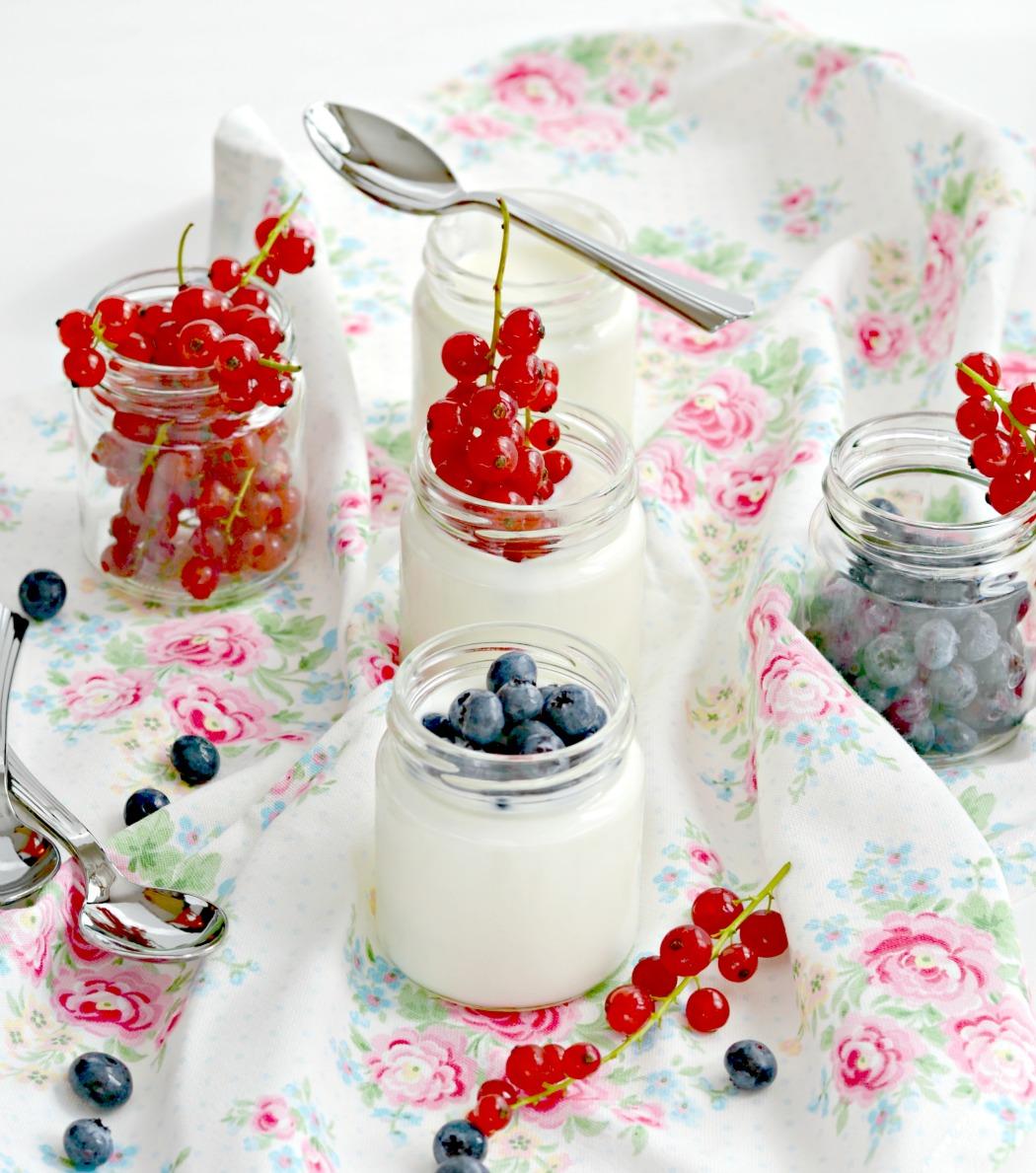 sylvislifestyle-milchdialog-joghurt-4