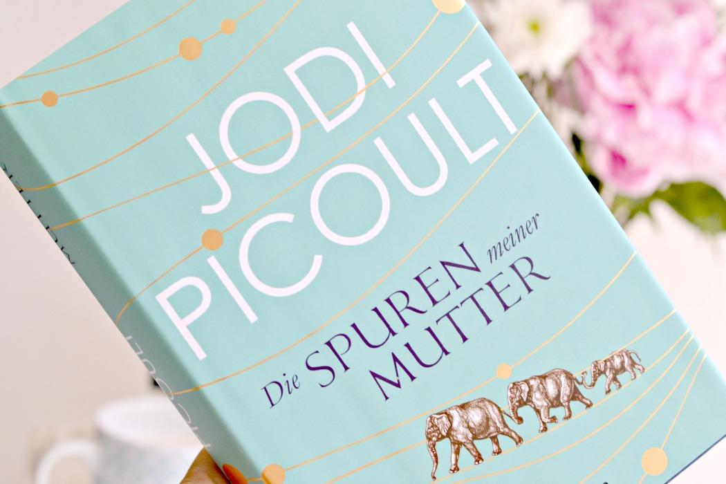 Bildergebnis für jodi picoult die spuren meiner mutter penguin